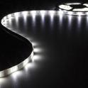 Ruban LED Blanc Froid 12V 10mm x 5m adhésif 150 LEDS IP61